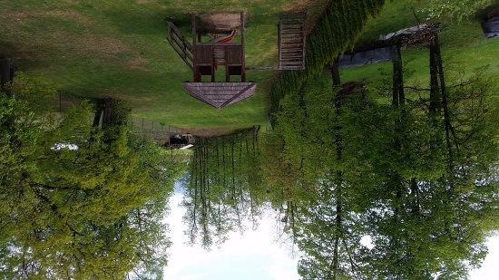 Lesce, Slovenya: 20170416_152758_large.jpg