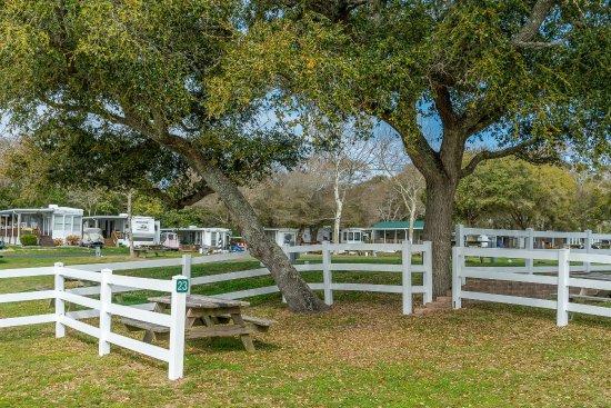 Holiday Trav L Park Resort Updated 2017 Campground