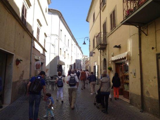 Civitavecchia Tours Tarquinia