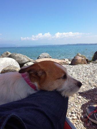 Bau Beach - la Spiaggia di Braccobaldo : IMG_20170416_115625_large.jpg