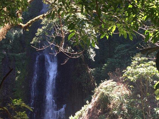 Grecia, Costa Rica: Catarata 1