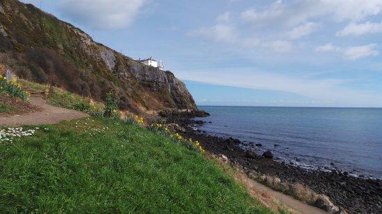 Blackhead Path: Black Head lighthouse