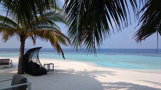 Foto de North Ari Atoll