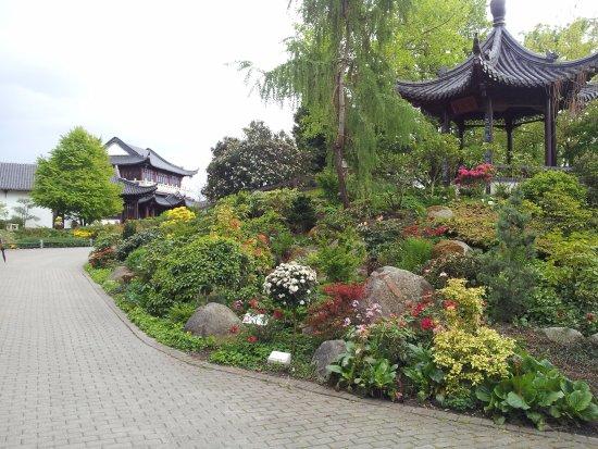 Luisenpark Mannheim: Chinesischer Garten