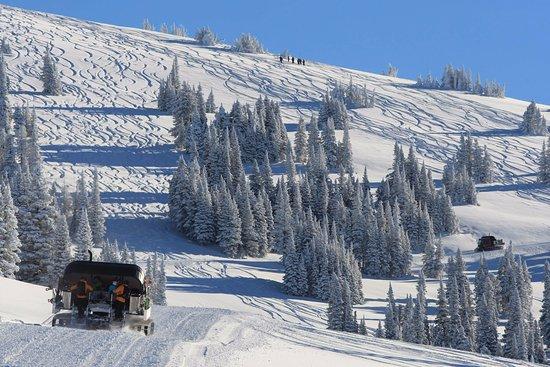 Alta, Ουαϊόμινγκ: Cat skiing