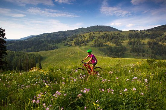 Alta, WY: Crosscountry trails