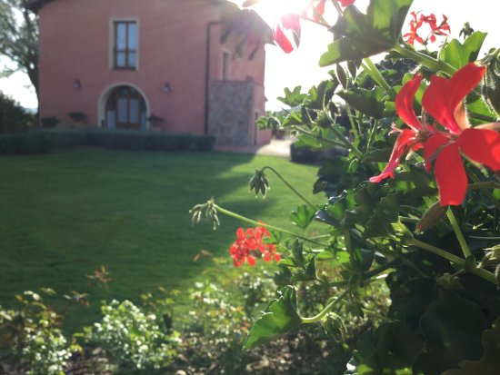 Gambassi Terme, Italia: photo3.jpg