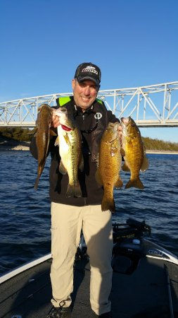 Branson West, Μιζούρι: Table Rock Lake Fishing Guide Service