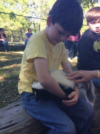 Chipley, FL: Seacrest Wolf Preserve