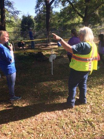 Chipley, Floryda: Seacrest Wolf Preserve