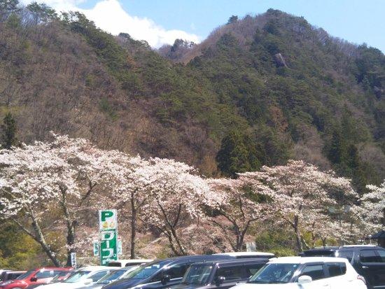 Kanazakura Shrine : DSC_0270_large.jpg