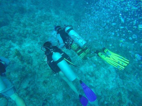 Providencia Island, Kolumbia: Experiencia Abril 2017