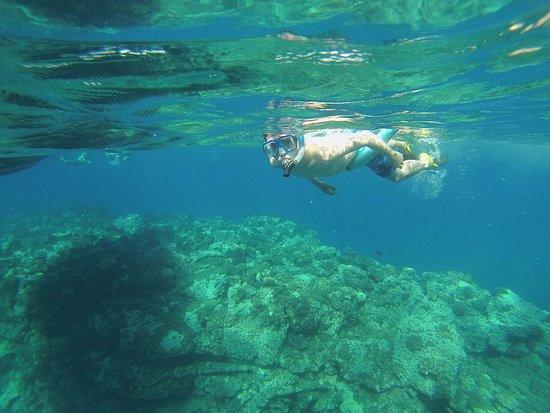 Hawaii Ocean Rafting : snorkel trip