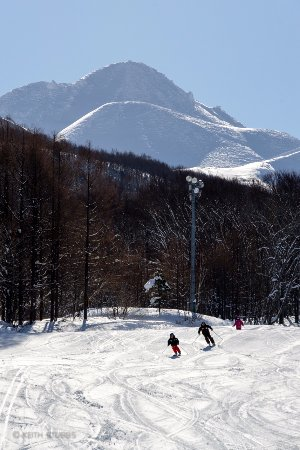 Ajigasawa-machi, ญี่ปุ่น: Groomed trails at Aomori Spring Resort with Mt Iwake in background. Photo by Keith Stubbs.