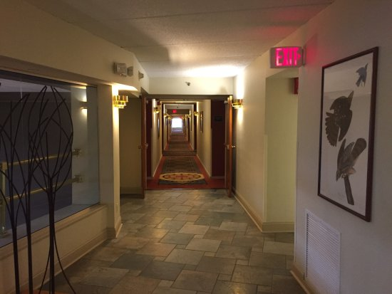 Woodcliff Hotel and Spa: photo8.jpg