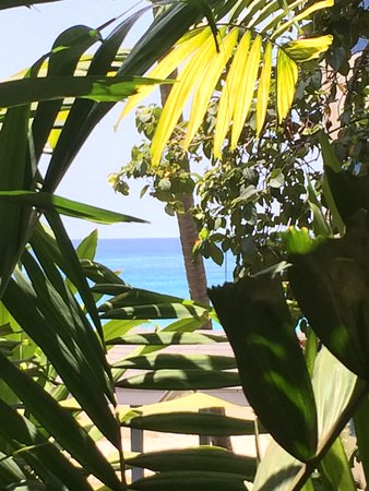 Holetown, Barbados: The splendid Caribbean from our balcony... morning coffee made in the room to enjoy this view