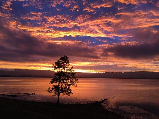 Lake illawara