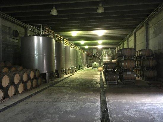 Agrelo, Argentina: Hermosa bodega, mejor vino!