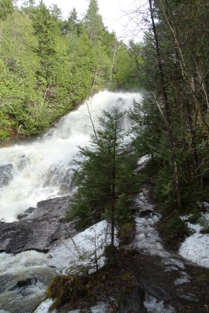 Colebrook, NH: April water flowing
