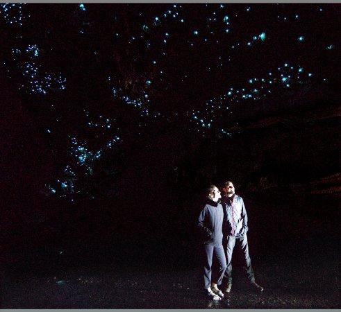 Waipu, نيوزيلندا: Visitors admiring the glow worms at Waipu Caves