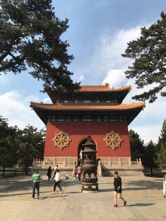 Potala Palace (Putuo Zongcheng Temple): photo7.jpg