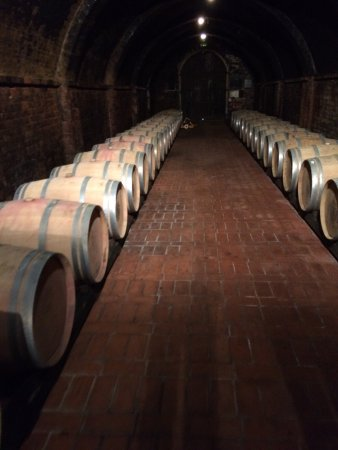 Weingut Avignonesi: photo0.jpg