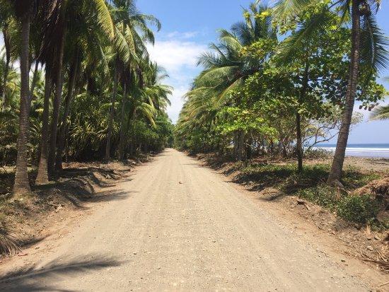 Паррита, Коста-Рика: photo2.jpg