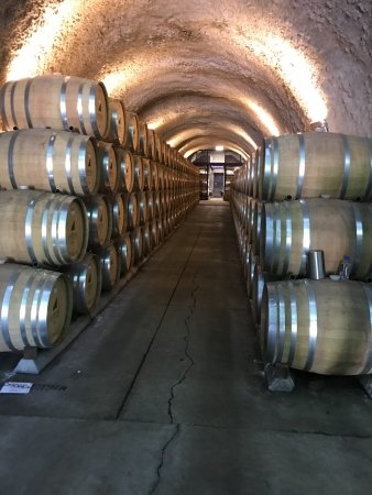 JUST Inn: on the wine cellar tour/in the cave