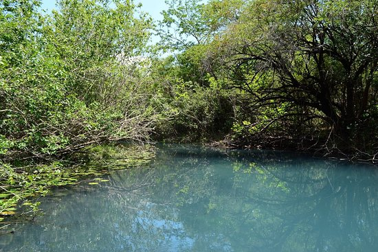 Flores, Portugalia: En el arroyo pucte, camino a cráter azul