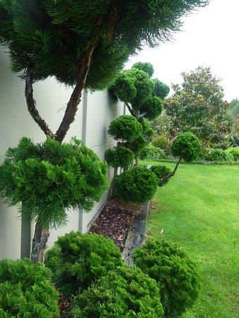 Tamahere, New Zealand: Garden