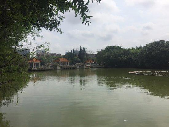 逸仙湖公園