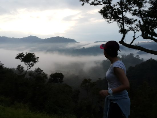 Raub District, Malesia: Morning walk - watching the sunrise above the morning mists