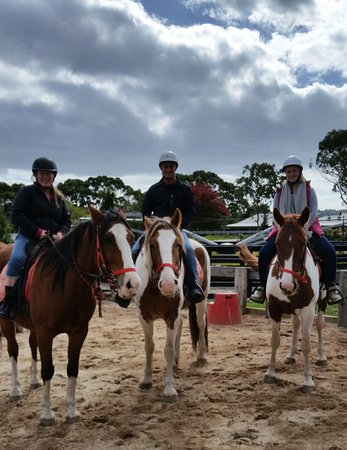 Horseback Winery Tours: The three amigos go wine tasting on our trusty steeds!