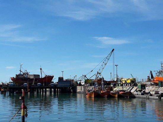 Puerto de Mar del Plata : 20170413_113808_large.jpg