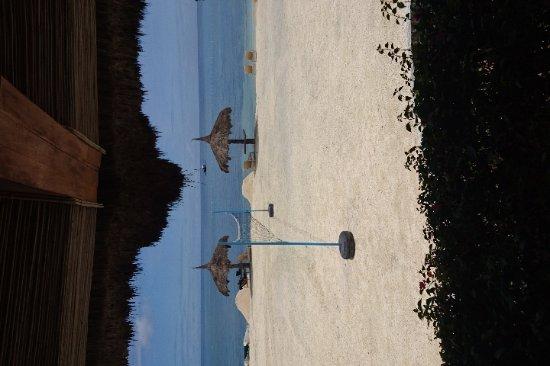 Bluewater Panglao Beach Resort: IMG-33685be1d8fa2ea35c203f3538003ba1-V_large.jpg
