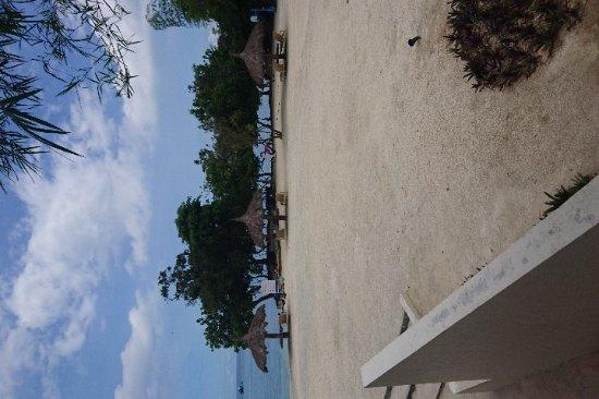 Bluewater Panglao Beach Resort: IMG-f18132995eb5d2fd4f5ac6357cbbccff-V_large.jpg