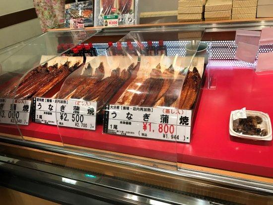 魚の数え方7種を覚えよう!日本独特の魚の単位を解説