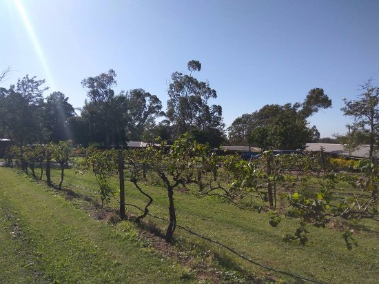 Hermitage Road Cellar Door & Winery
