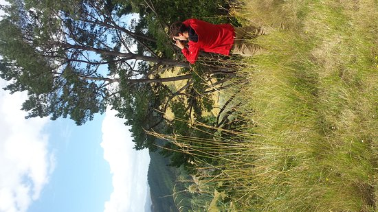 Whanganui, New Zealand: Great groups on our Mail Run