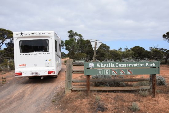 Whyalla, Australia: the park