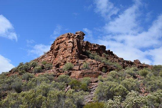 Whyalla, Australia: Wild Dog Hill