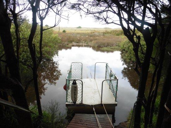 Waipu, New Zealand: the raft to the beach