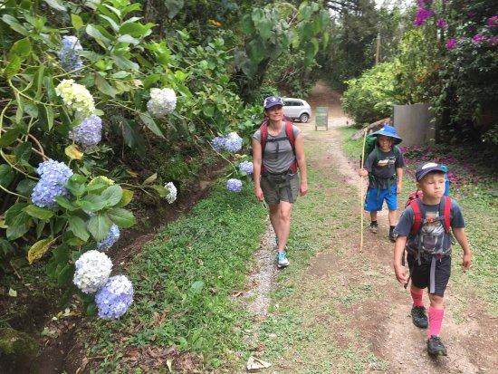Chirripo National Park, كوستاريكا: Start of the hike