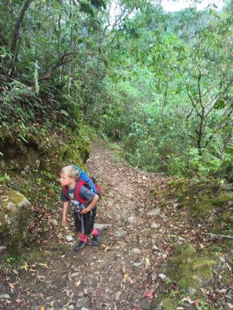 Chirripo National Park, كوستاريكا: steep trails