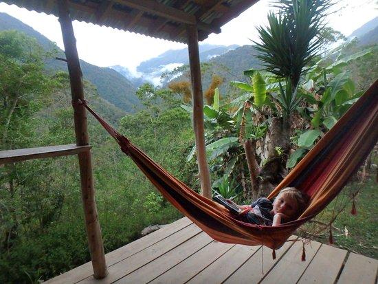Chirripo National Park, كوستاريكا: Gavilan Cabin deck and hammock