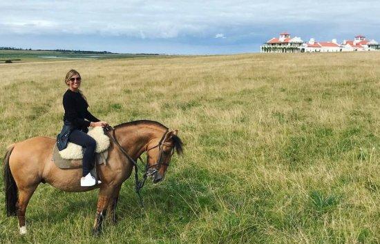 Playa VIK Jose Ignacio : Horse riding at Estancia Vik