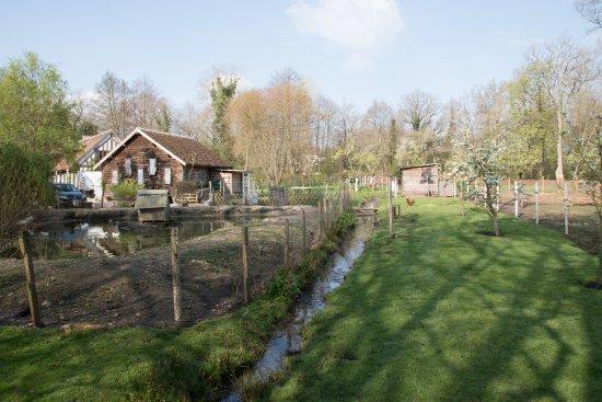 Souesmes, França: Le Moulin d'en Bas - Le Jardin