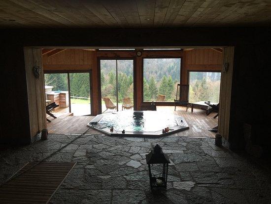 Ventron, Francja: Le spa avec bain norvégien à l'extérieur, hamam et sauna