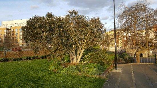 Town Quay Park