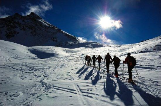 VSN Tour & Treks Nepal